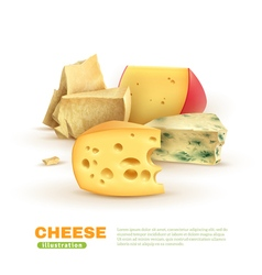 Colorful Cheese Template vector