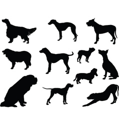 dogs collection 3 vector image