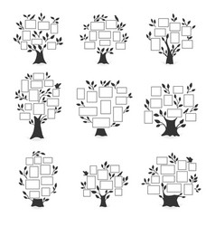 family trees with photo frames vector image
