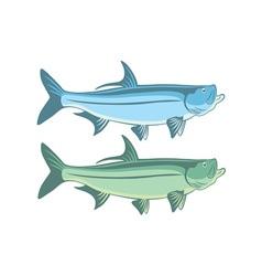 Fish tarpon vector
