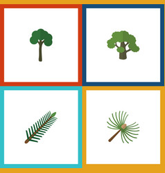 flat icon ecology set of spruce leaves tree vector image
