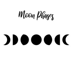 Moon phases simple template silhouette vector