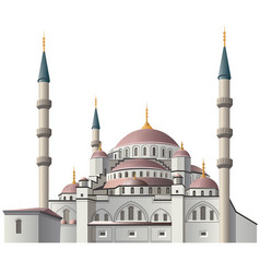 mosque in istanbul vector image
