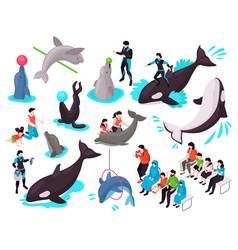Show in dolphinarium isometric set vector