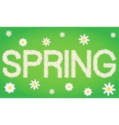 Spring tag composed from daisy flowers vector