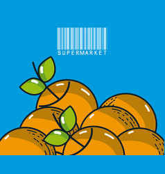 Sweet oranges super market products vector