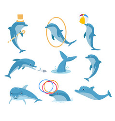 the most intelligent animal is the dolphin vector image