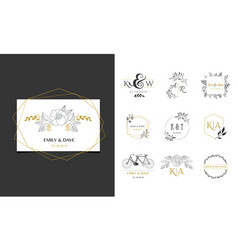 wedding logos hand drawn elegant monogram vector image