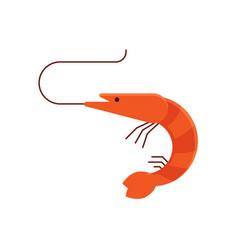 cartoon shrimp icon vector image vector image