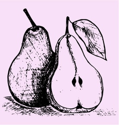 pear with leaf vector image vector image