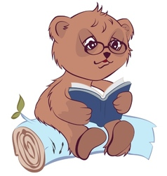Bear reading book vector