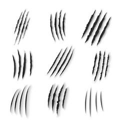 Claws scratches isolated animal nails rip vector