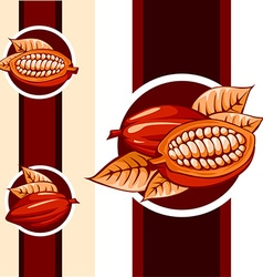 Cocoa bean design - vector