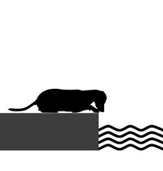 Dog at shore vector