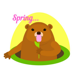 groundhog at spring icon flat style vector image