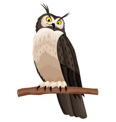 owl sitting on a branch vector image