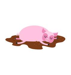 sleeping pig in mud farm animal is sleeping vector image