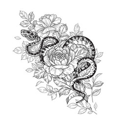 Twisted snake and rose flowers vector