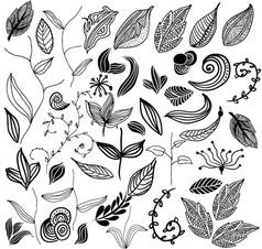 Leaf variation vector image