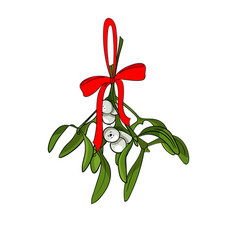 Christmas mistletoe branches for your designs vector