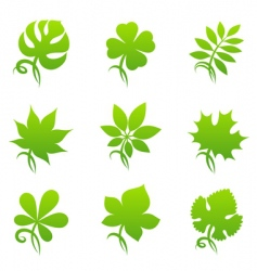 leaves elements for design vector image vector image