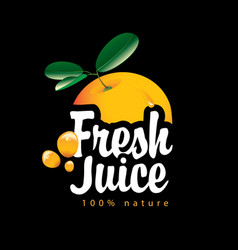 Banner with orange fruit and fresh juice splashes vector