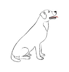 black line dog vector image