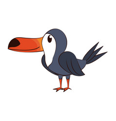Cute tucano bird vector