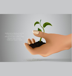 Handful ground with green sprout in her hands vector