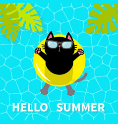 Hello summer swimming pool water black cat vector