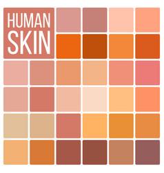 Human skin various body tones chart vector