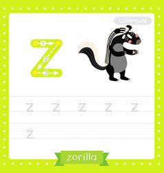 Letter z lowercase tracing practice worksheet of vector