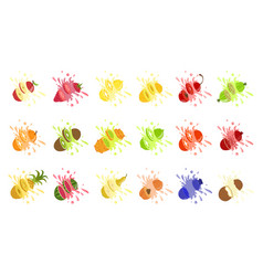 set fruit juice splash pineapple strawberry vector image