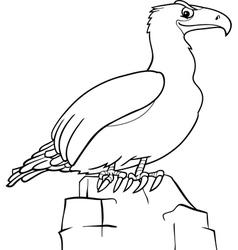 cartoon eagle for coloring book vector image vector image