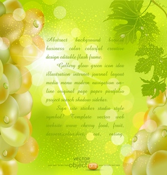 background with grapes vector image vector image