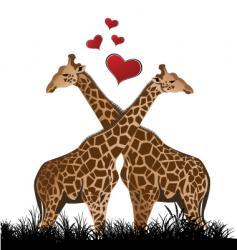 giraffe love vector image vector image