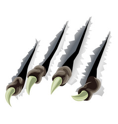 creature claws tearing through background vector image
