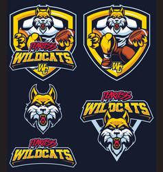 fearless wildcats mascot vector image