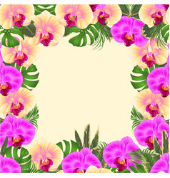 Floral frame bouquet with tropical flowers yellow vector