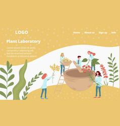 laboratory medicines from plants scientifical vector image