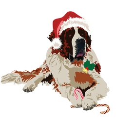 Saint Bernard in hat santa claus vector image