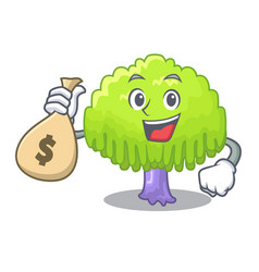 With money bag isolated weeping willow on the vector