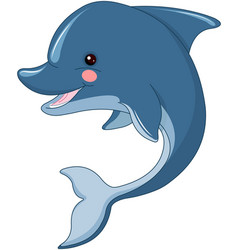 Cute dolphin vector