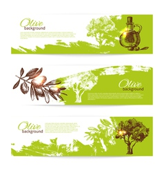Banner set vintage olive background vector