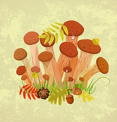 Edible mushroom armillaria for you design vector