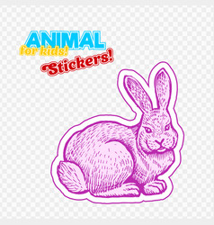 farm animal rabbit in sketch style on colorful vector image