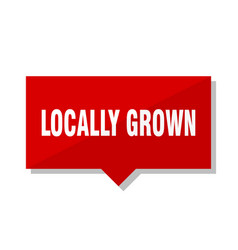 Locally grown red tag vector