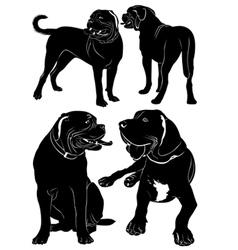 Mastiff vector