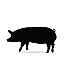 Pig silhouette in black vector