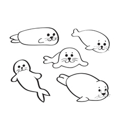 Set of hand drawn baby seals isolated on white vector